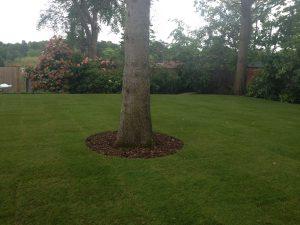 Landscape Gardening Reigate